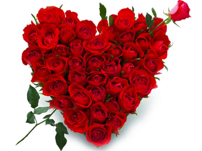 Сердце из роз купить в СПб