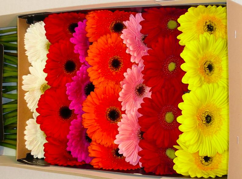 Оптовая доставка цветов заказать или купить шоколадный букет в москве