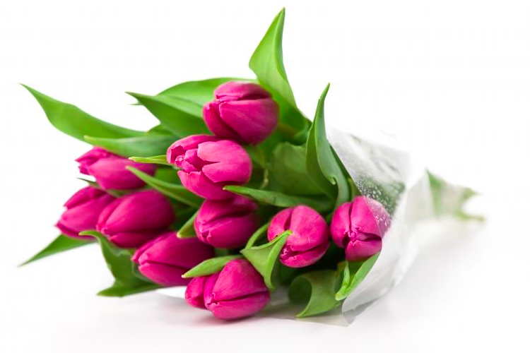 Купить букет тюльпанов в СПб.