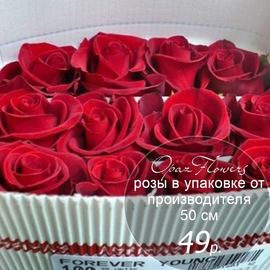 Розы в пачке от производителя   высота 50 см  ар.RO-006