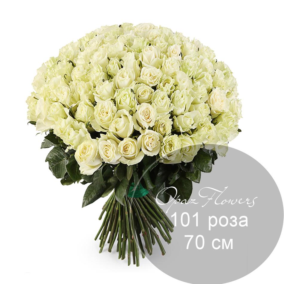 101 белая роза 70 см под ленту