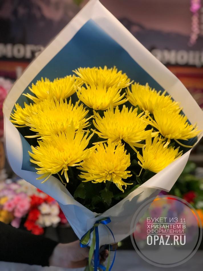 Букет из 11 желтых хризантем в оформлении № Х-018