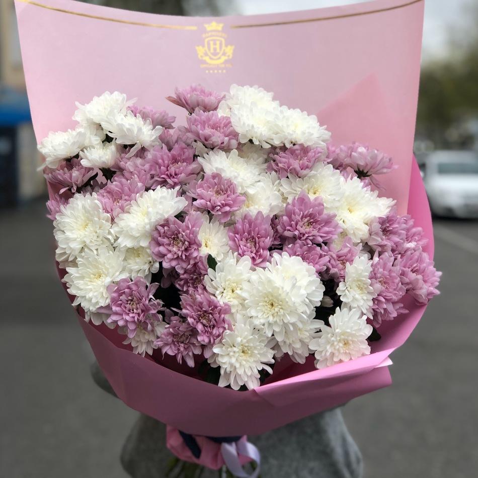 Букет бело-розовые хризантемы  в оформлении № ВС 001