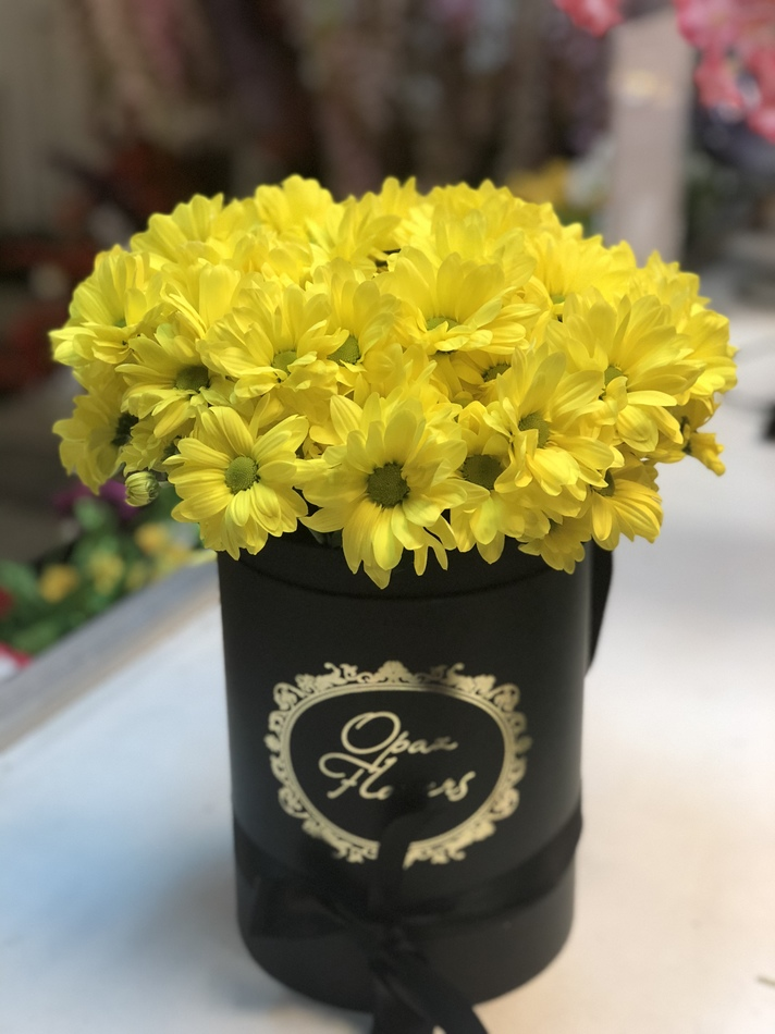 кустовые хризантемы в шляпной коробке 5шт.
