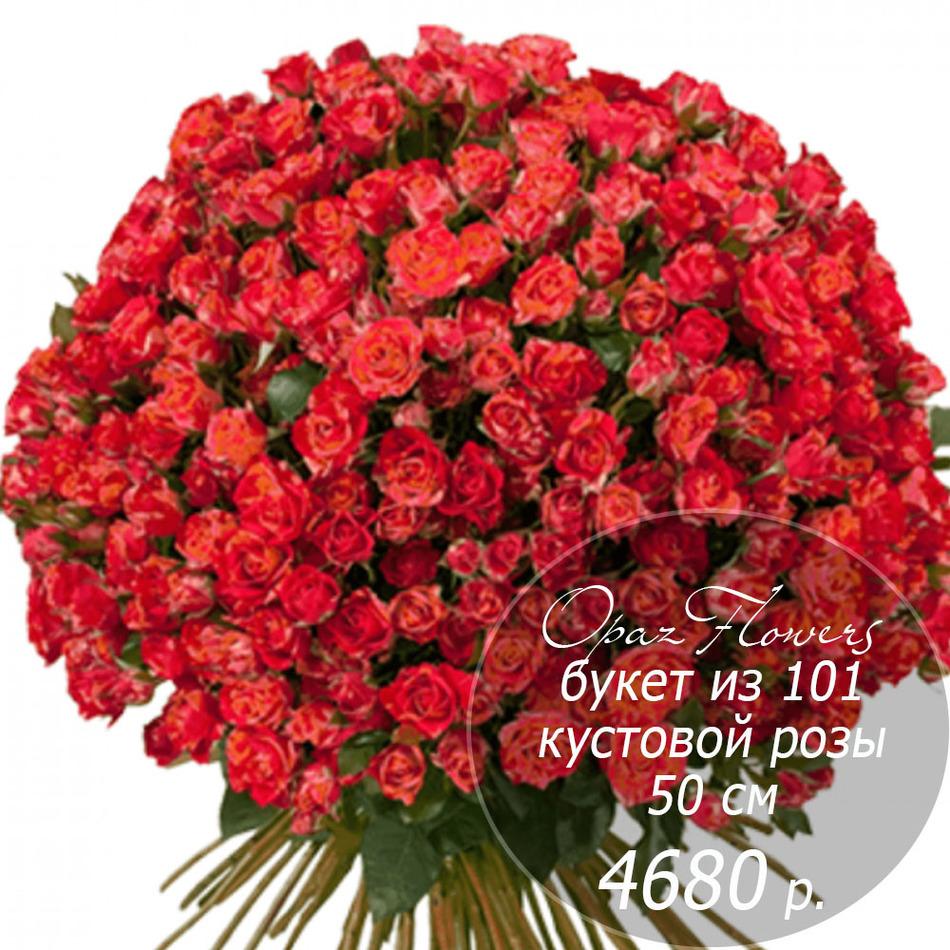 RK-7  букет из  101 кустовой розы 50 см