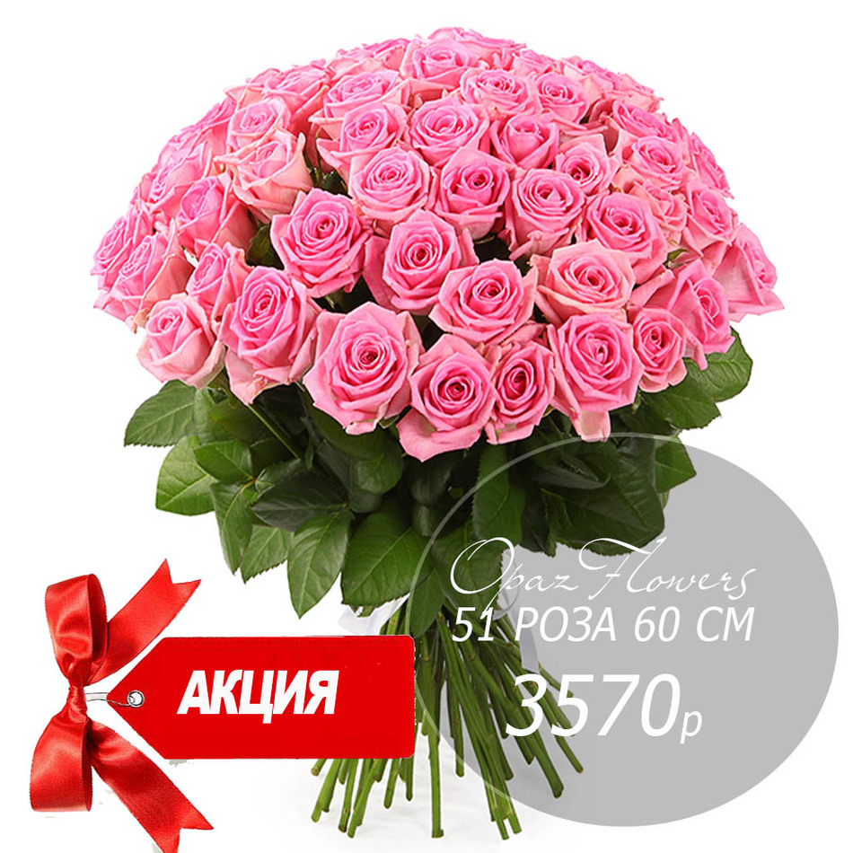 Букет  из 51 розовой розы 60 см