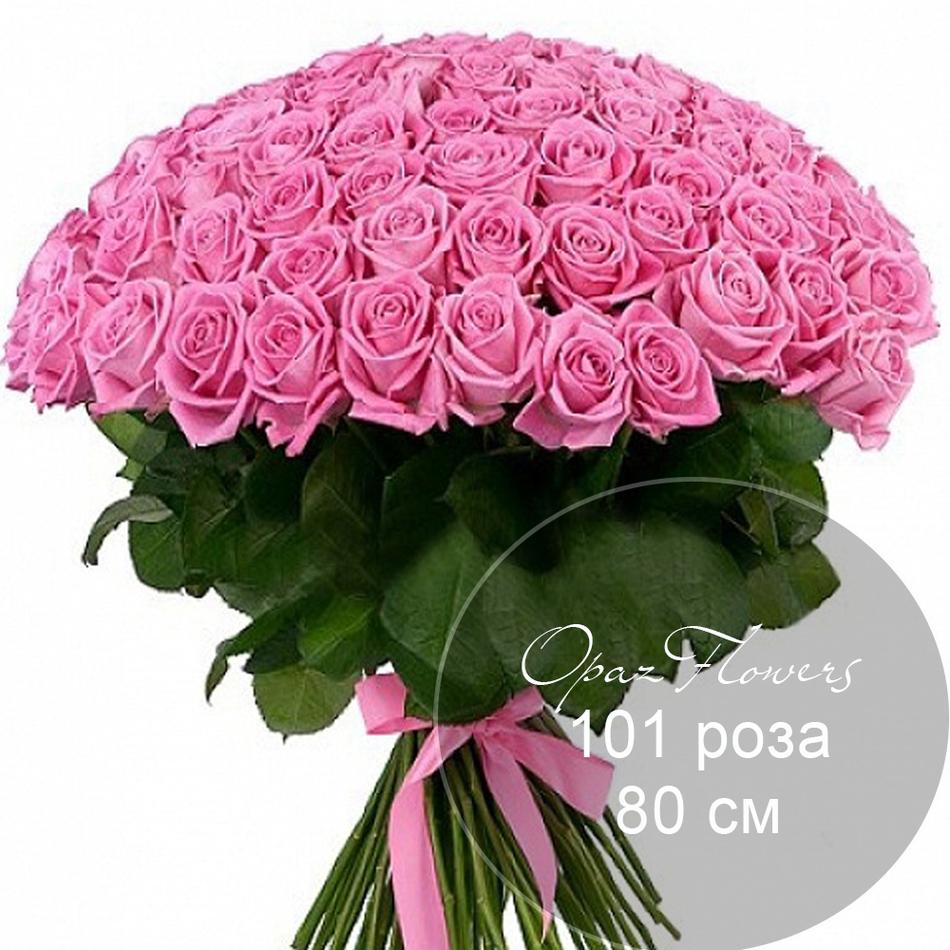 101 розовая  роза 80 см под ленту