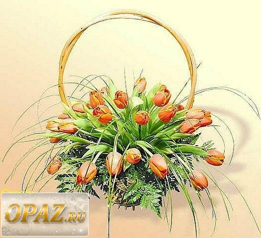 № A-1102 В основу корзины входит 41 тюльпана