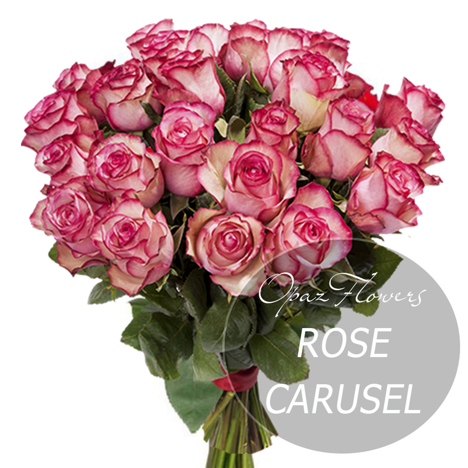 № RS-1401 на фото 25 бело-розовых роз