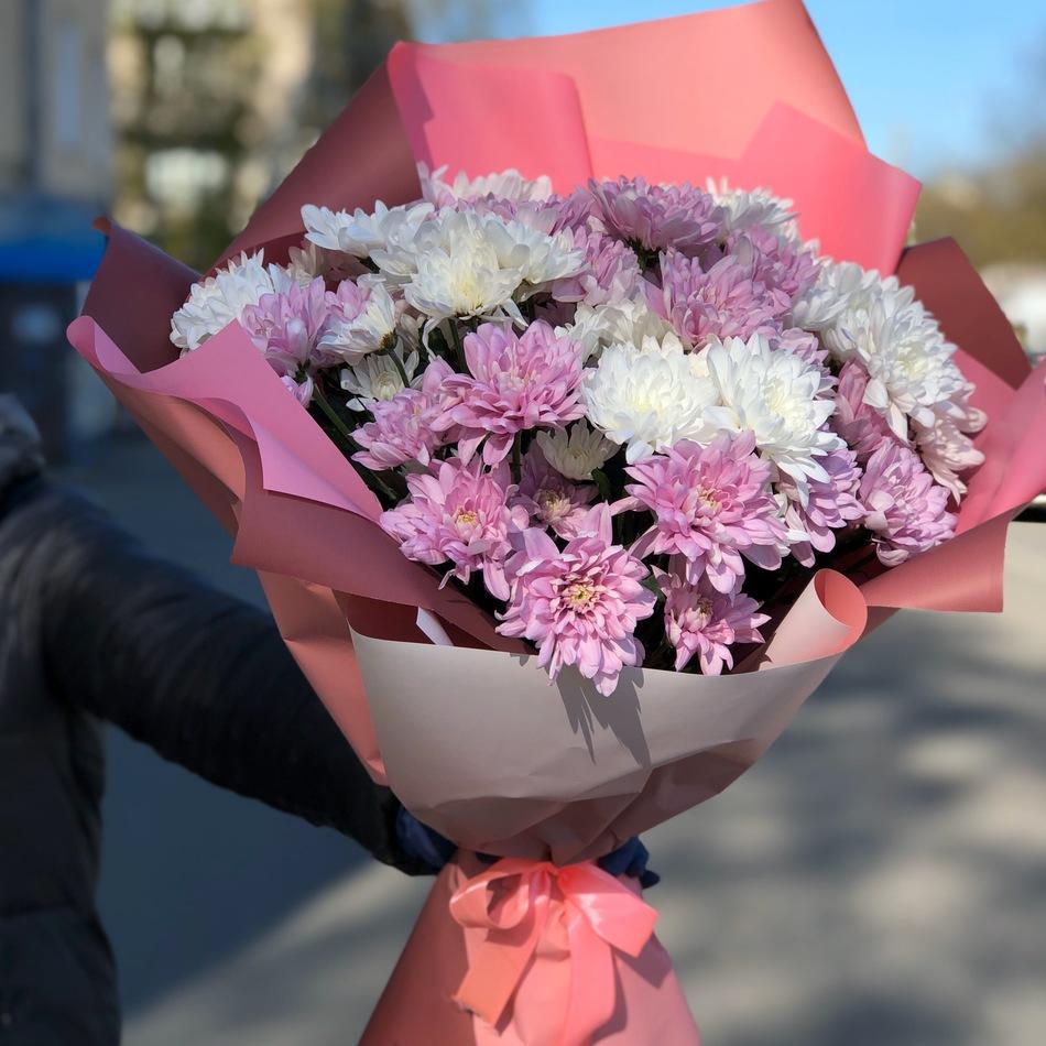 Букет бело-розовые хризантемы  в оформлении № ВС 005