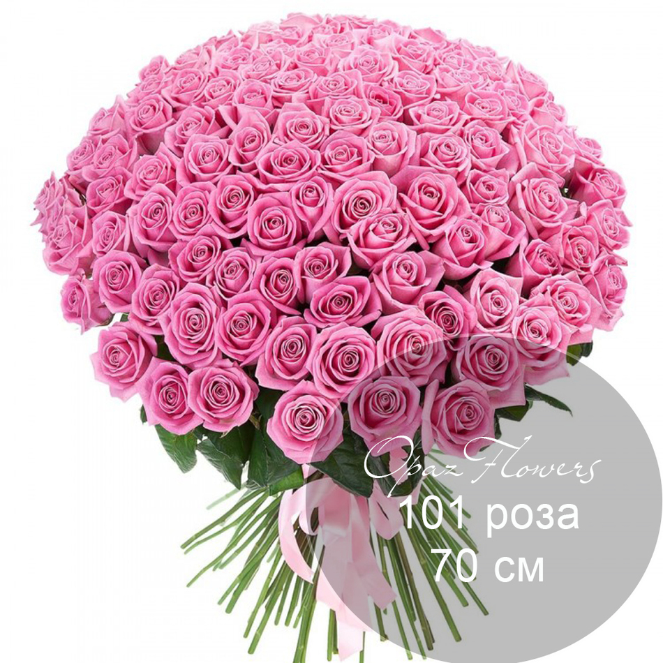 101 розовая  роза 70 см под ленту
