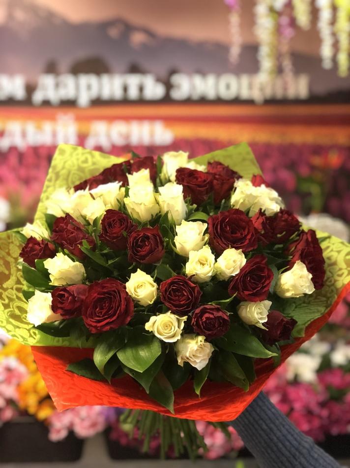 51 бело-красная роза Кения 40см