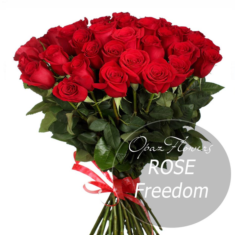 NRS-1407 на фото25 темно-красных роз