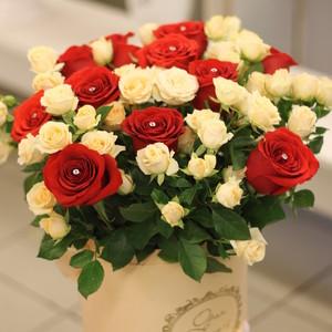 розы в шляпной коробке IMG_2746.JPG