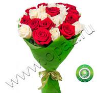 № Р-808 Букет состоит из: - роза 25 шт., длина 50 см.