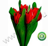 № Т-1822 7 тюльпанов Цена: 350 руб.