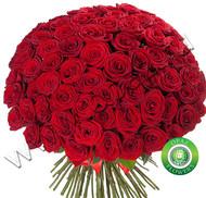 № Р-834 Букет состоит из: - роза 101 шт., длина 50 см.