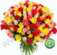 Букет № Р-845  101 роза акция