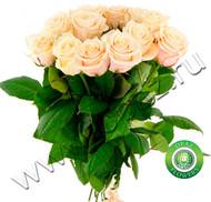 № Р-801 Букет состоит из: - роза 11 шт., длина 60 см.