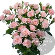 RK-29  кустовая роза 50 см