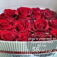 Розы в пачке от производителя   высота 60 см  ар.RO-012