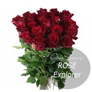 № RS-1410 на фото 25 бардовых роз