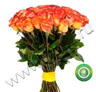 № Р-810 Букет состоит из: - роза 25 шт., длина 50 см.