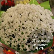 букет из 25 кустовых хризантем №2