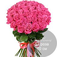 51 розовая роза 70 см под ленту