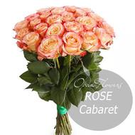 № RS-1412 на фото 25 двухцветных роз