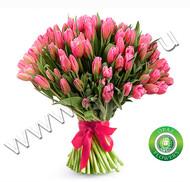 № Т-1810 51 тюльпан Цена: 2550 руб.