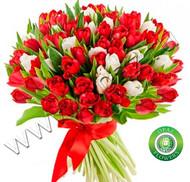 № Т-1805 55 тюльпанов Цена: 2750 руб.