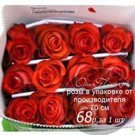 Розы в пачке от производителя   высота 70 см  ар.RO-018