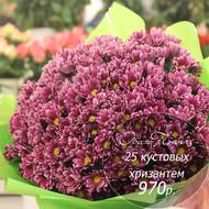 Букет из 25 кустовых хризантем №3
