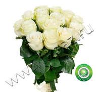 № Р-804 Букет состоит из: - роза 15 шт., длина 50 см.