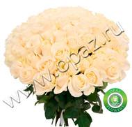 № Р-832 Букет состоит из: - роза 101 шт., длина 70 см.