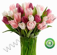 № Т-1819 Букет состоит из 37 тюльпанов Цена: 1850 руб.