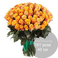 101 оранжевая   роза 40 см под ленту