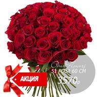Букет 51 красная роза 60 см под ленту