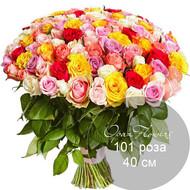 101   роза микс 40 см под ленту