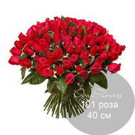 101 красная роза 40 см под ленту