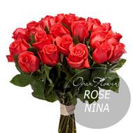 № RS-1405 на фото 25 алых роз