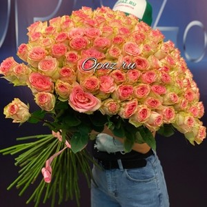 101 роза Эквадор Premium 70см №РС-093