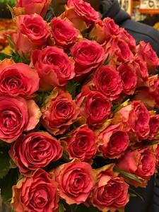 Цена 10шт Роза Голландия Premium СА-02