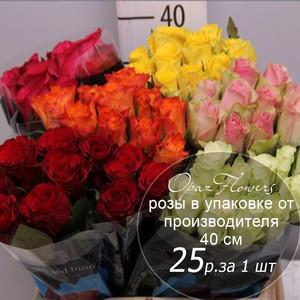 Розы в пачке от производителя   высота 40 см  ар.RO-027