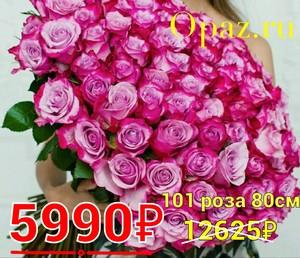 Р-021 Букет 101 розовая роза 80см.