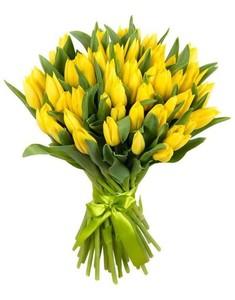 Тюльпаны 51 шт № ТУ009