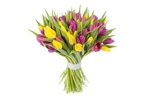 Букет тюльпанов 35 шт. в оформлении лента