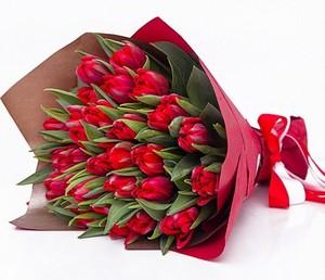 Тюльпаны 31шт №ТУ32
