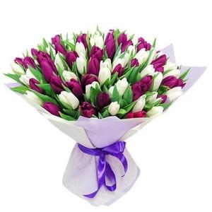 Тюльпаны 75 шт № ТУ005